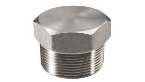 Carbon Steel Stainless Steel Pipe Fitting Flanges manufacturer in Pimpri-Chinchwad